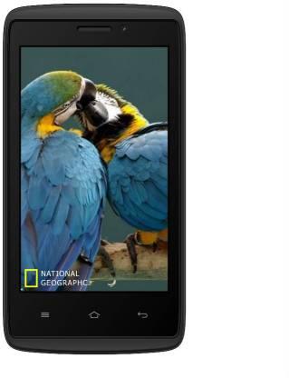 ADCOM Kitkat A40 PLUS 3G (Black, 512 MB)
