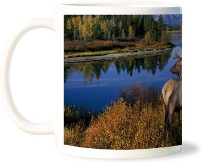 Lovely Collection Amazing Nature View Ceramic Coffee Mug