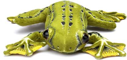 Play N Pets Flying Frog  - 13.78 inch
