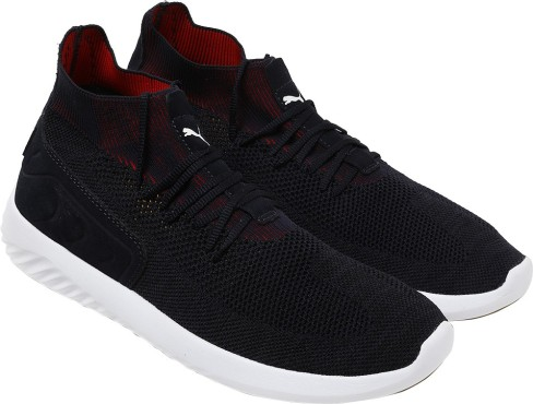 Puma Rbr Speed Cat Wings Running Shoes