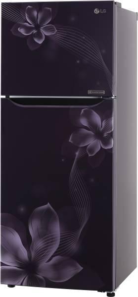 Buy LG 260 L Frost Free Double Door 3 Star Refrigerator (GL C292SPOU Gl Vase Buy Online India on buy birch bark, buy fireplace, buy centerpiece, buy dog, buy horse, buy furniture, buy glass, buy watch, buy flowers,