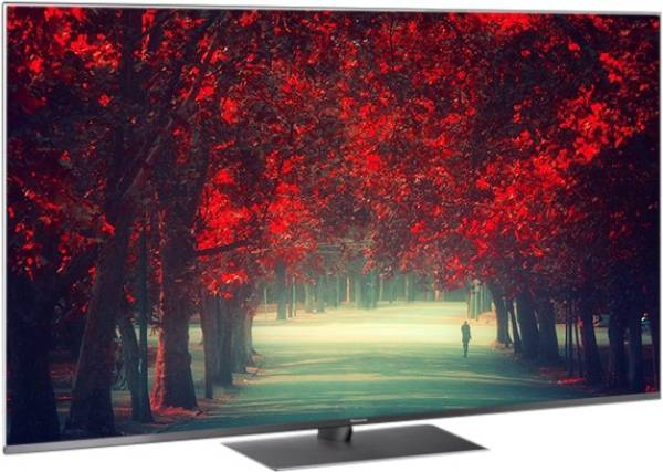 Panasonic 65 Inches Ultra HD (4K) LED Smart TV (TH-65FX800D, Grey)