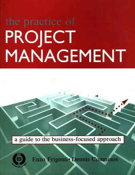 portfolio and programme management demystified reiss geoff rayner paul