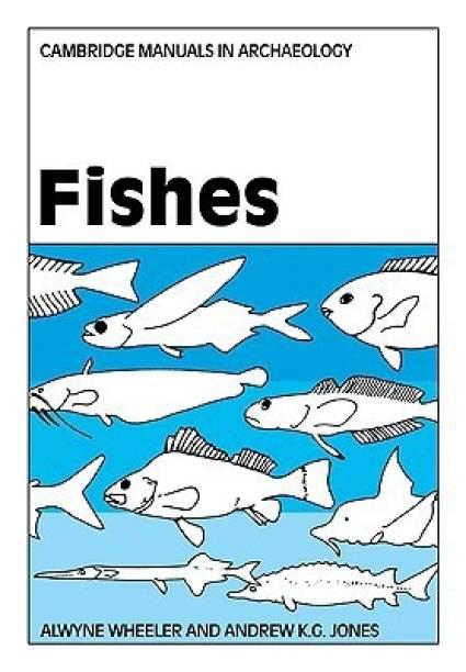Fish - Buy Fish Online at Best Prices In India | Flipkart com