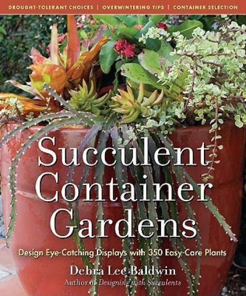 Cacti Succulents Online At Best Prices In India Flipkart