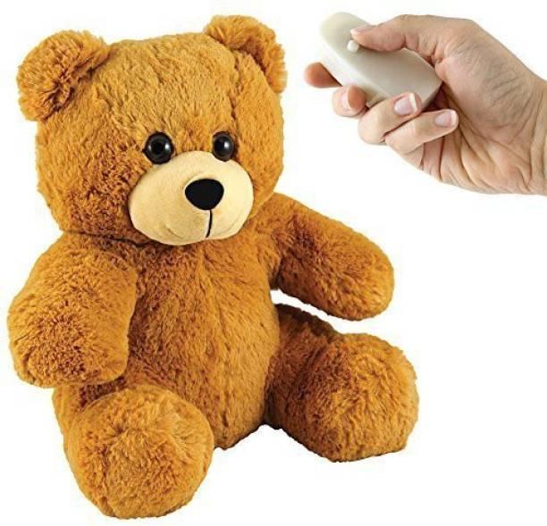 Carol Wright Gifts Remote Control Ing Bear 4 Inch