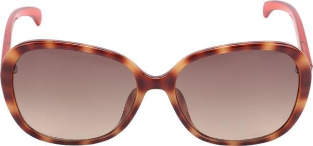 d12961ce445 Calvin Klein Sunglasses - Buy Calvin Klein Sunglasses Online at Best ...