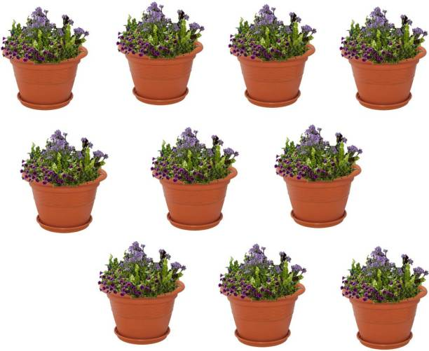 Meded 8 Inch Heavy Duty Plastic Garden Planters With Bottom Tray Pack Of 10