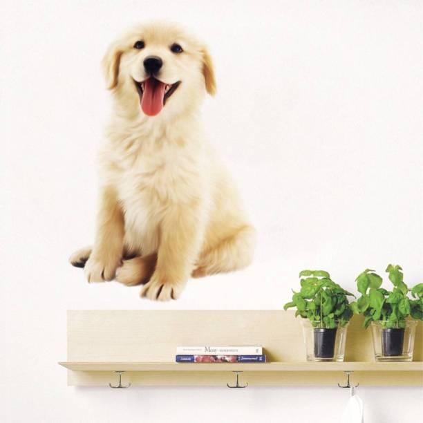 Rawpockets Cute Dog
