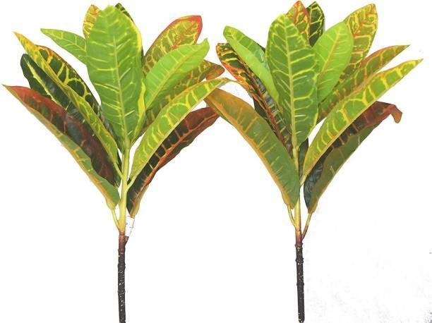 FOURWALLS Beautiful Artificial Plastic Croton Plant Mini Bush (15 cm x 15 cm x 35 cm, Set of 3) Multicolor Wild Flower Artificial Flower