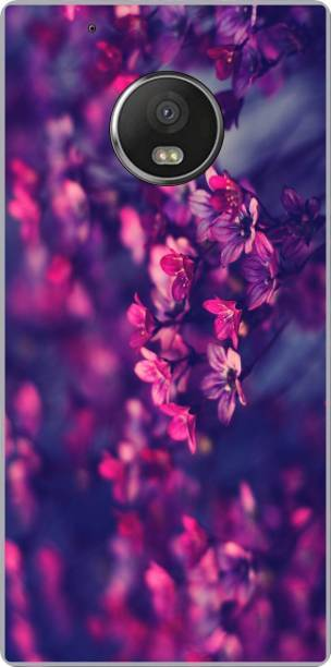 Exclusivebay Back Cover for Motorola Moto G5 Plus