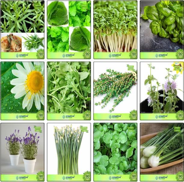 Root Bridges Herbs - Buy Root Bridges Herbs Online at Best