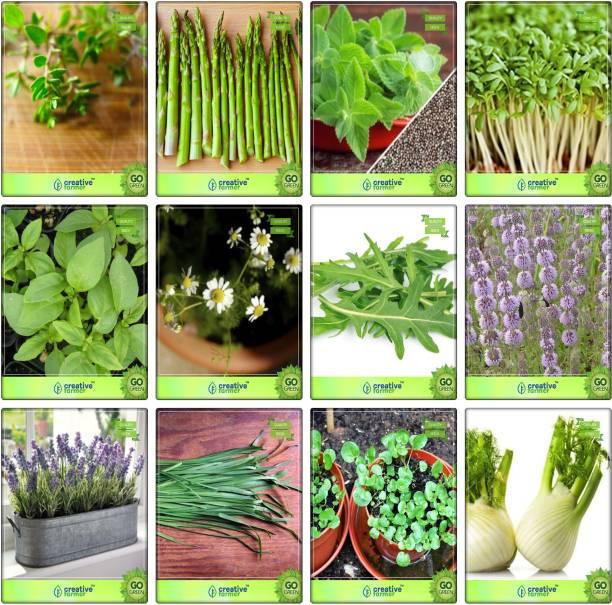 Aquarium Herbs - Buy Aquarium Herbs Online at Best Prices In