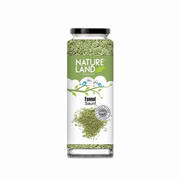 Natureland Organics Fennel (Saunf) 100 Gm