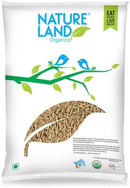 Natureland Organics Cumin Whole 250 Gm