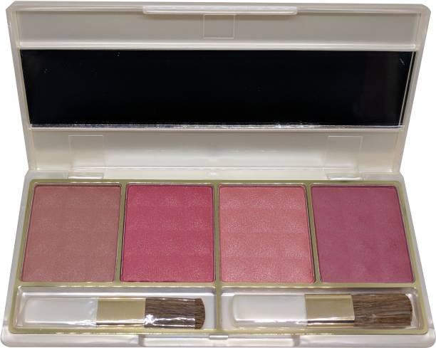 Cameleon Professional Color Blusher Palette