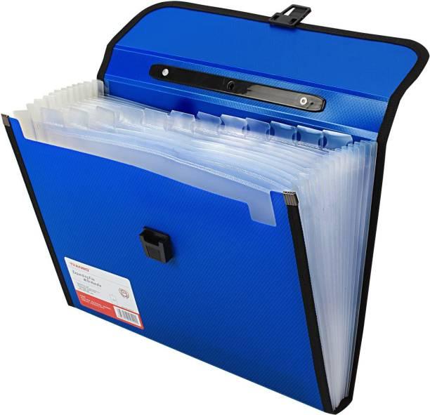 TRANBO Polypropylene File Folder with 13 Pockets, Handle, Index Tab, A4 Size, Blue