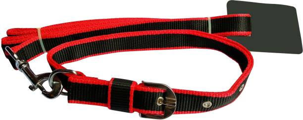 Dogs Collars Harnesses Buy Dogs Collars Harnesses Online At Best