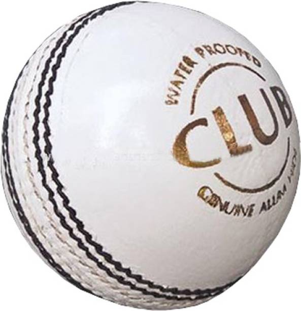 DIABLO Sports Leather Club Cricket Ball White (4Part) Cricket Leather Ball