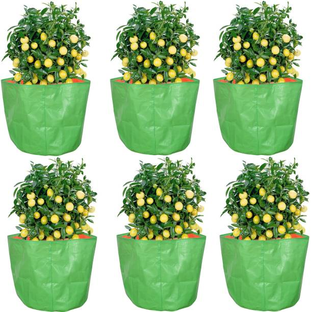 """Coirgarden Terrace Gardening HDPE Grow Bags for Vegetable Plants (15""""x15"""" inches) - [38cms(L) X 38cms(H)] - Pack of 6 Grow Bag"""