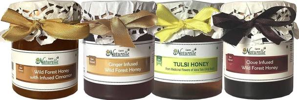 Farm Naturelle Real Ginger Infused Forest Honey, Real Clove Infused Forest Honey (250 Gms), Vana Tulsi Forest Honey(250 Gms) and Cinnamon Infused Forest honey(250 Gms) Combo {4X 250 gm pack }-Immense Medicinal Value