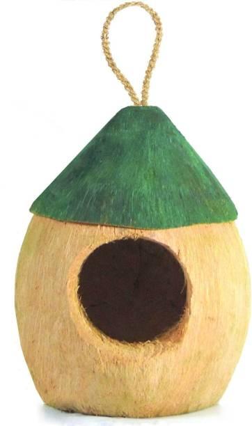 ZENRISE carved Coconut green hut Bird House