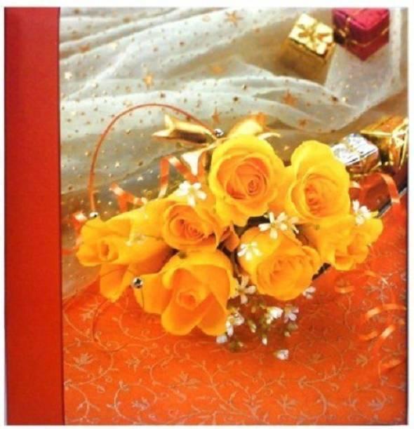 Natraj Studio High Quality Photo Album With 0.6mm Thick Extra Clear PVC Film, 100 Pocket, (Photo Size Supported: 5'x7') Album