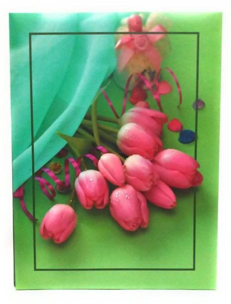 Natraj Studio High Quality Photo Album With 0.6mm Thick Extra Clear Pvc Film, 100 Pocket, (Photo Size Supported: 4'x6') Album