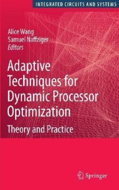 Adaptive Techniques for Dynamic Processor Optimization - Theory and Practice
