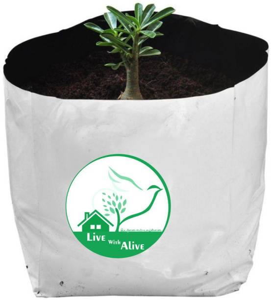 live with alive Grow Bags (set of 10) Extra Large 100% Pure Virgin Grow Bags UV Stabilised Extra Strong Superior Quality - (Qnty-10) Size:L20 X W20 X H35cm. Grow Bag