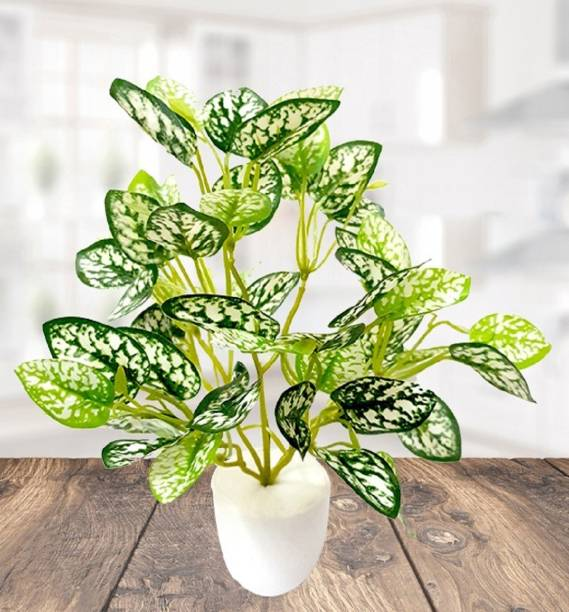 dea1446af Artificial Plants - Buy Artificial Plants Online at Best Prices In ...