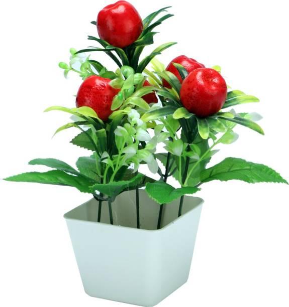 Sehaz Artworks Apl-Red Bonsai Wild Artificial Plant  with Pot