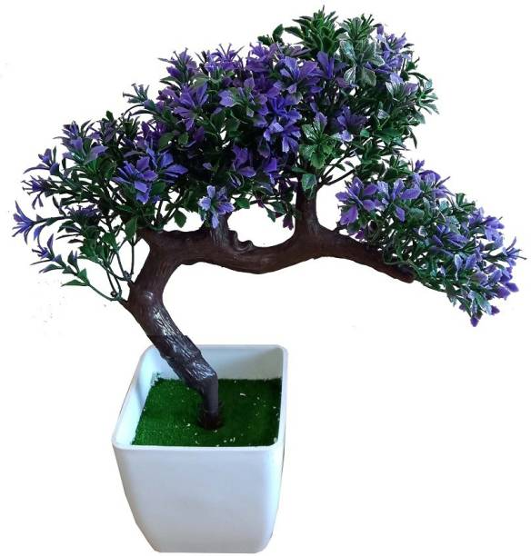 d11f6bbd5c1cc kaykon Bonsai Wild Artificial Plant with Plastic Pot- Blue - 10 inch Bonsai  Wild Artificial