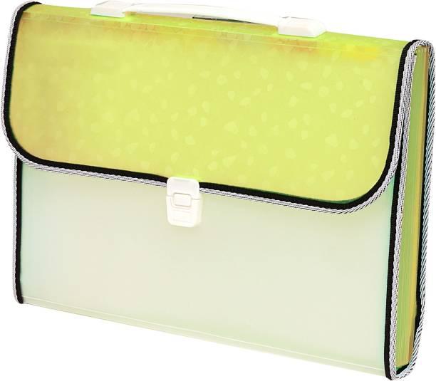 Flipkart SmartBuy Polypropylene 13 Pocket with handle and Index tab Document File Folder