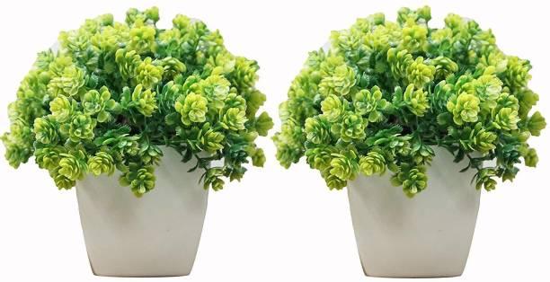 Florakite Bonsai Wild Artificial Plant  with Pot