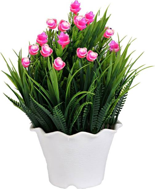 Sehaz Artworks Grass-LightPink Bonsai Wild Artificial Plant  with Pot
