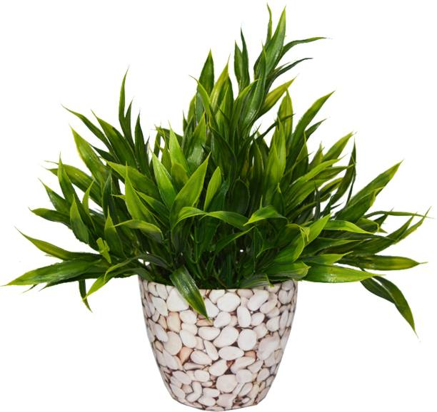 fancymart Bamboo in Texture Artificial Plant  with Pot