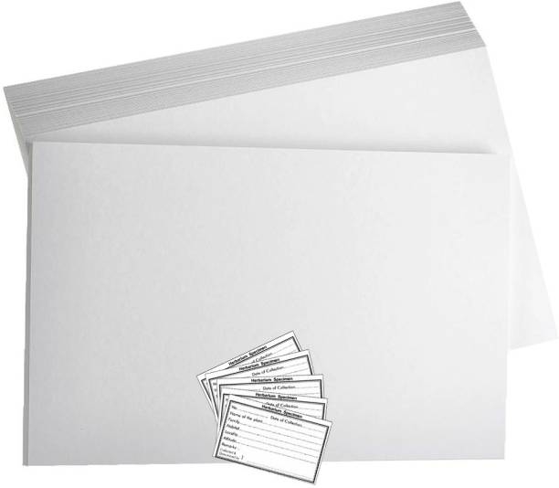 CRAFTWAFT HERBARIUM SHEET WITH LABEL PACK OF 10 WHITE 28X35 120 gsm Project Paper