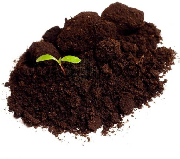 MASHKI 5kg of 100% Pure natural ORGANIC VERMICOMPOST / WORM-COMPOST Fertilizer