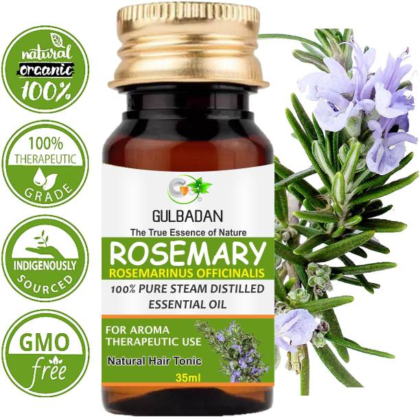 GULBADAN Rosemary Essential Oil therapeutic grade for Joints, Massage Hair Oil