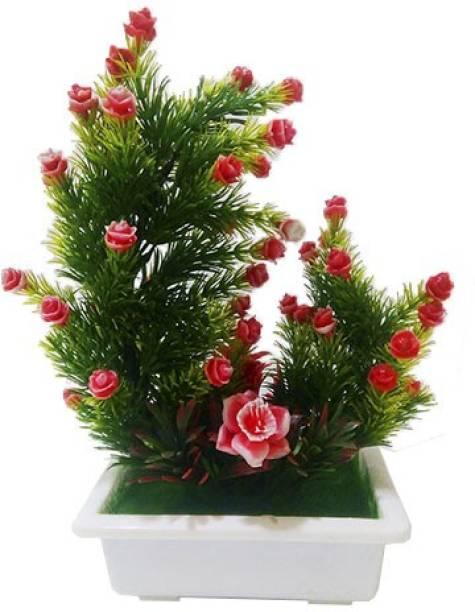 SAF RED BONSAI PLANT WITH TREY DESIGN POT ( 28 CM , RED ) Bonsai Wild Artificial Plant  with Pot