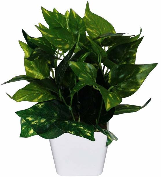 BK Mart Best for Home Office or Gift Natural Looking Money Plant Bonsai Artificial Plant  with Pot
