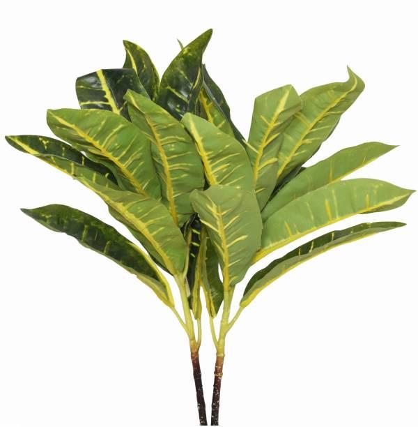 FOURWALLS Beautiful Artificial Plastic Green Croton Plant Mini Bush Without Vase Artificial Plant
