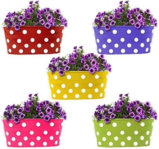 Decorhand Wall Mount Set of 5 Plant Container, Flower Basket Plant Container Set