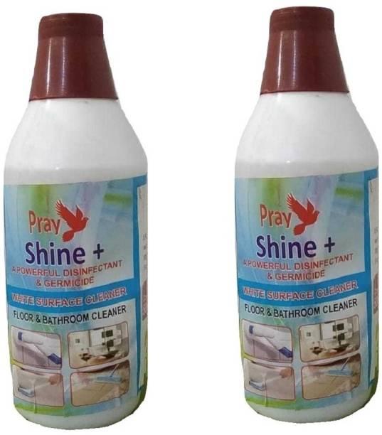 Pray Shine Floor & Bathroom Cleaner 250ML (Pack of 2) Fresh