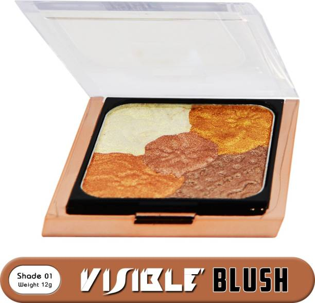 M.A.R.S 5 in 1 Pallet Visible Blur Blush BP09-01 For Professional Makeup