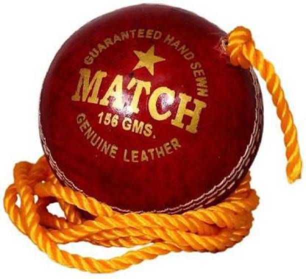 Gawin Practice Leather Hanging Coaching Cricket Ball Cricket Leather Ball