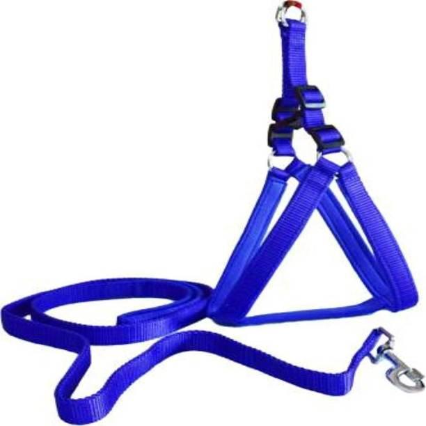 SF 0014 Dog Harness & Leash