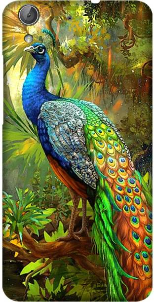 CASE SUTRA Back Cover for Huawei Honor Holly 3, Huawei Y6 II, CAM-UL00 - peacock Print