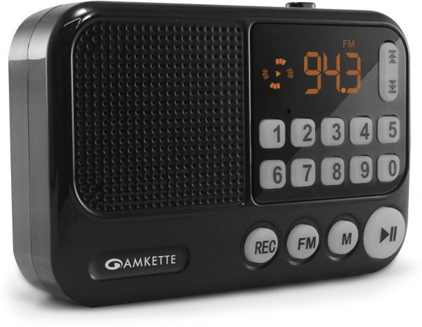 AMKETTE Pocket FM Portable Multimedia Bluetooth Speaker with Voice Recorder, USB, SD Card and Clock FM Radio